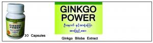 Ginkgo Power ()
