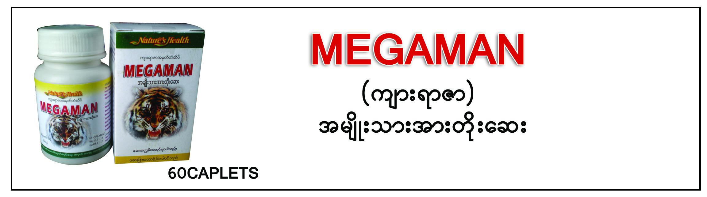 Megaman Tablet